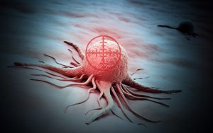 Aggressive Prostate Cancer Marker Works to Deliver Killing Agent to Cells in Early Study