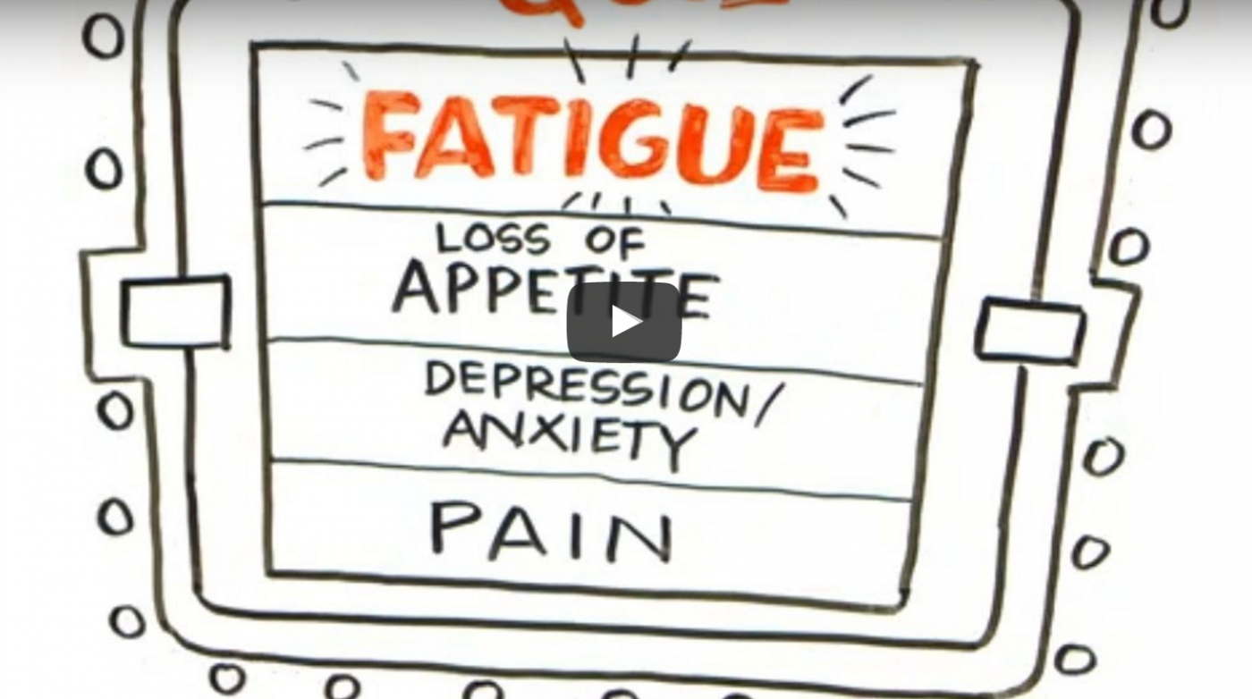 How To Manage Cancer Related Fatigue Prostate Cancer