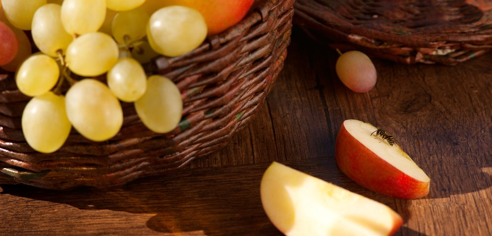 Compounds in Apples, Grapes and Other Plant Foods Stop Prostate Cancer in Mice, Study Shows